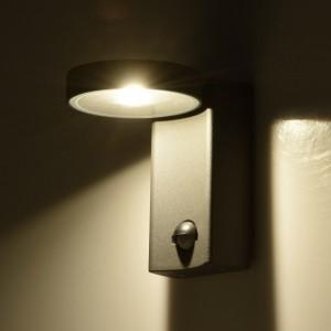 Светильник уличный настенный Меркурий 807022001