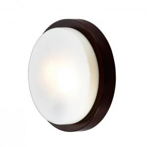 Настенно-потолочный светильник ODEON LIGHT HOLGER 2744/2C